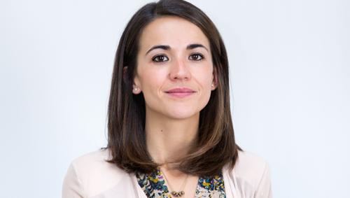 Silvia Merino, Gesconsult