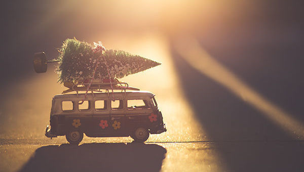 Caravana, Navidad, Volkswagen, árbol