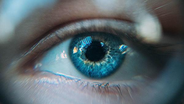 Vision__perspectivas__ojo__mercado