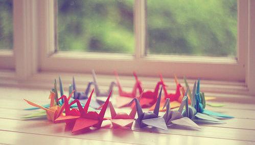 lanzamiento, selección, cartera concentrada, origami, colores