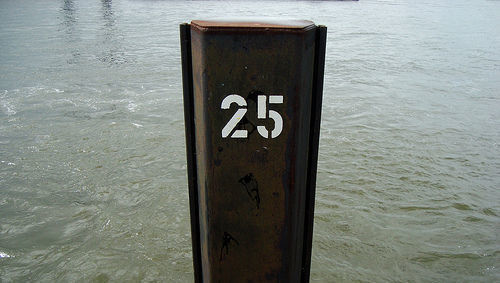 25, veinticinco, número, rentables