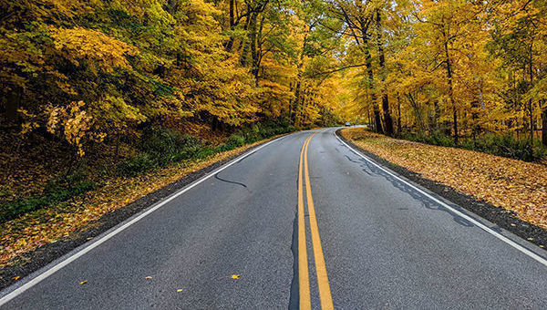 Carretera, otoño, camino, ruta