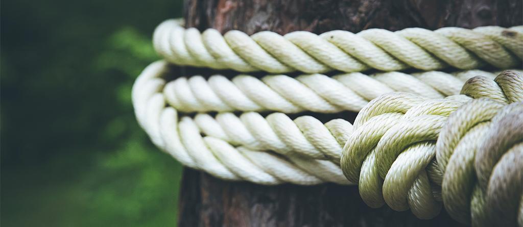 Tronco árbol cuerda