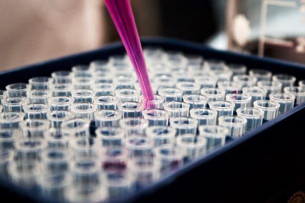 biotecnologia_ciencia