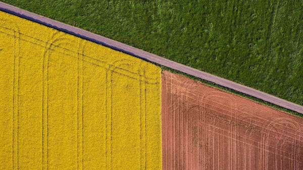 color_lines_yellow_green_three