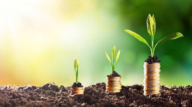 dinheiro, crescimento, moeda, rentabilidade, verde, ambiente