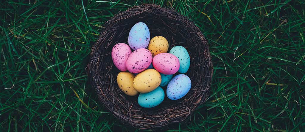 Páscoa ovos cesto noticia