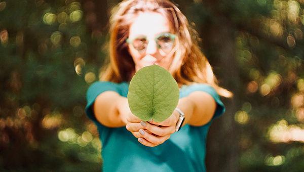 foglia_natura_sostenibile