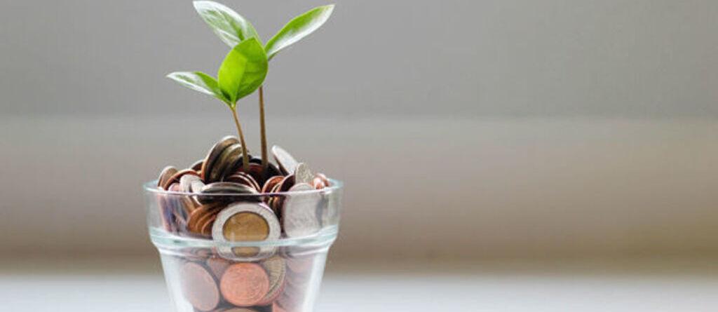 vaso con soldi news